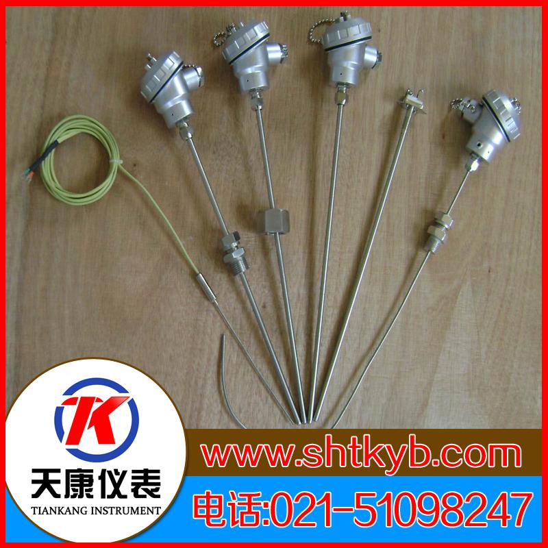 铠装热电偶WRMK-231