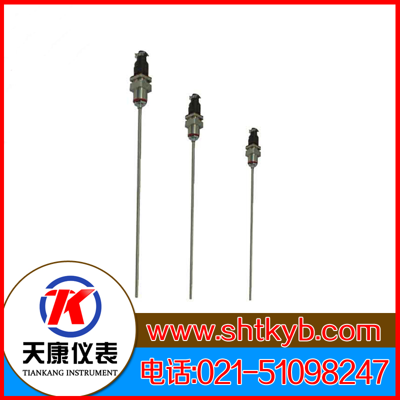 铠装热电偶WRCK2-571