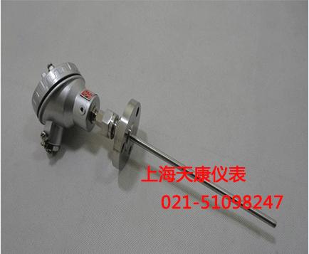 装配式热电阻WZP2-331